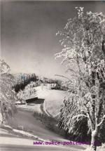 Beskydy-chata na Třeštíku