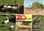 Safari- Dvůr Králové nad Labem