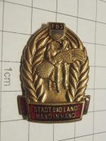 Odznak Německo, FDJ propaganda