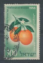 1956, Izrael Mi-134